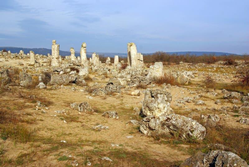 Stone forest - pobiti kamani - in bulgaria royalty free stock image