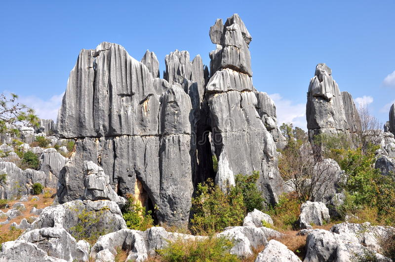 Download Stone Forest stock image. Image of geological, history - 30391369