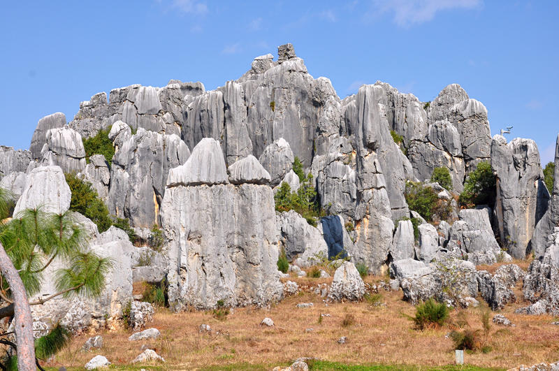 Download Stone Forest stock photo. Image of evolution, geomorphology - 30391378