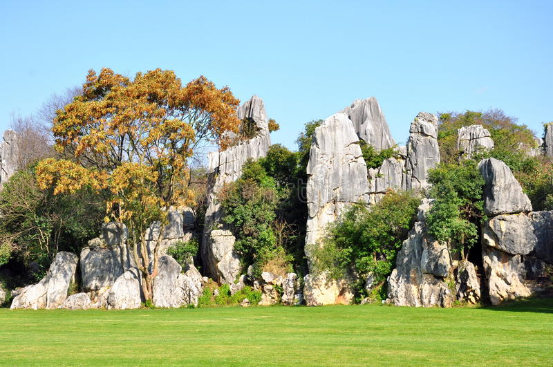 Download Stone Forest stock photo. Image of china, features, blue - 30391402