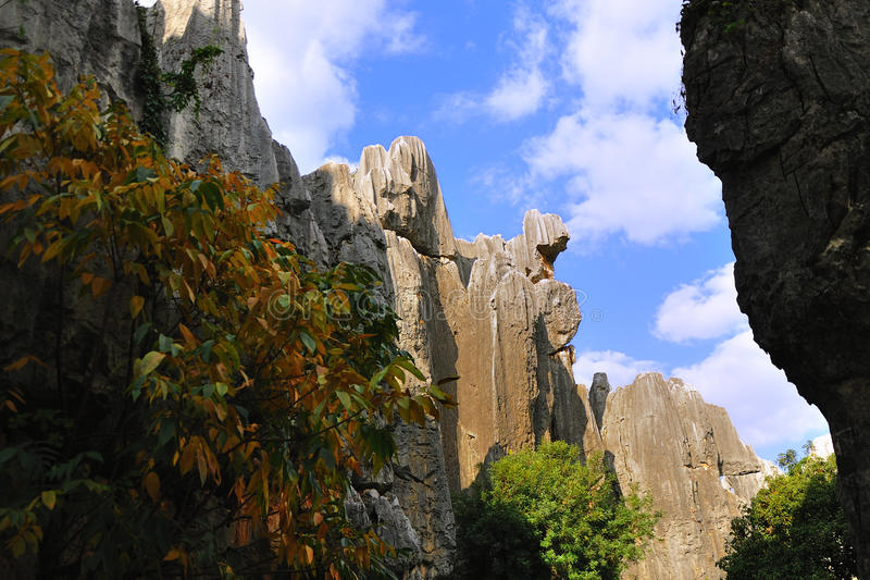 Download Stone forest in yunnan stock image. Image of asia, rare - 26958341