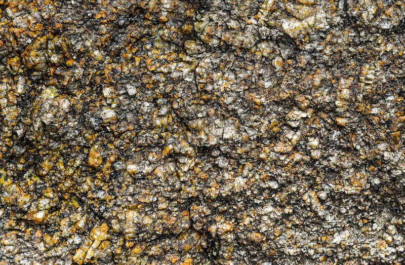 stone foundation background gray granular monolithic texture close-up part of wall natural strong stock photography
