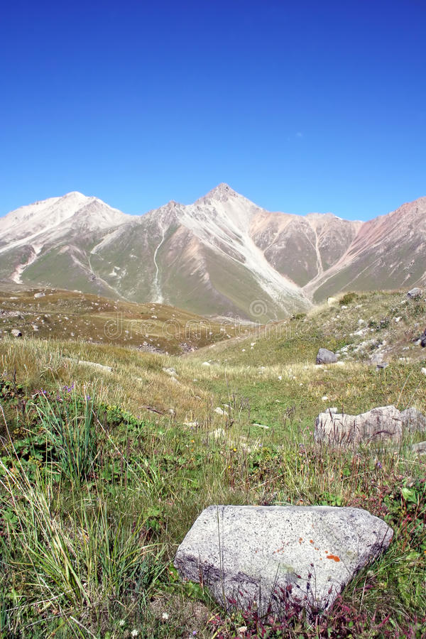 Stone in grass of mountain valley in Tien-Shan. Stone in green grass of mountain valley in Tien-Shan against a blue sky without clouds stock photography