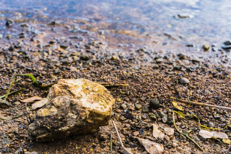 Stone on gravel background with focus at the top. Seashore royalty free stock photos