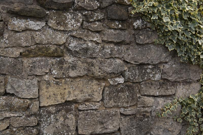 Stone gray textured wall. Traditional old dry stone wall in cotswolds village of bilbury gloucestershire england. Copy space stock photography