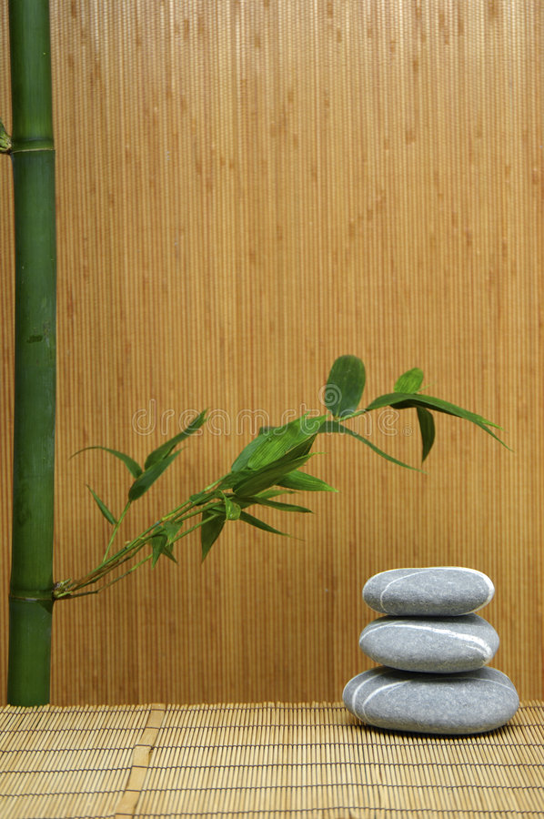 Stone and green Bamboo royalty free stock image