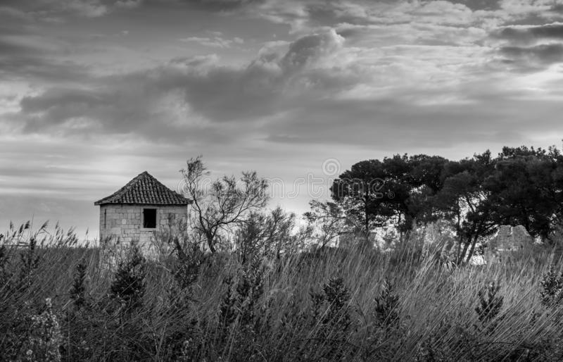 Stone house in a tall grass near a tree stock photo