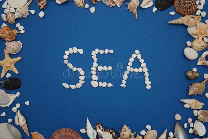 Stone Inscription, text, word: SEA over Blue Background. Shells Frame. Nautical and Marinne Concept. royalty free stock image