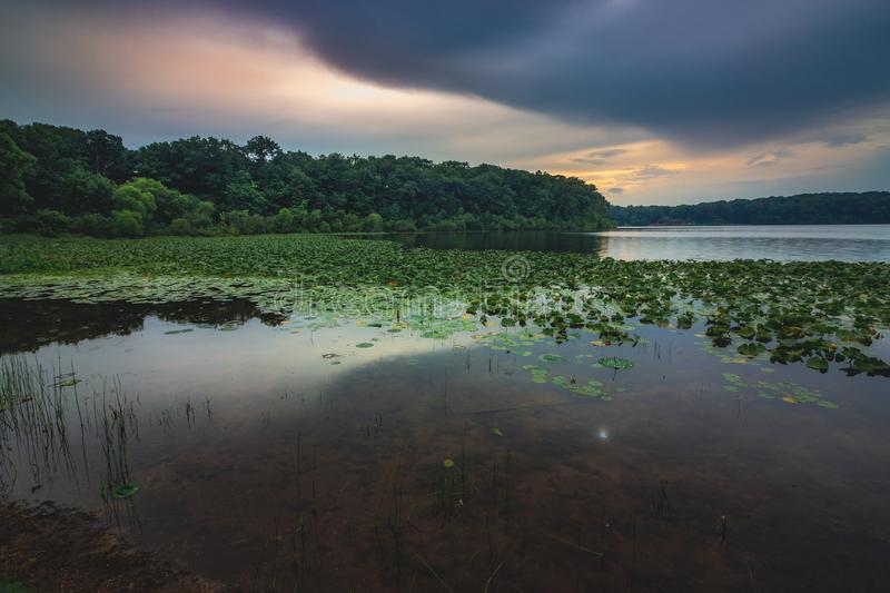 Stone Lake Sunset. Dramatic sky after a rain storm over the beautiful green lily-pad covered Stone Lake on a summer evening, LaPorte, Indiana royalty free stock photo