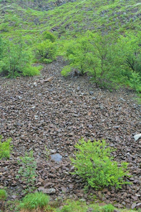 Stone landslide under spring rain, vertical orientation stock photography