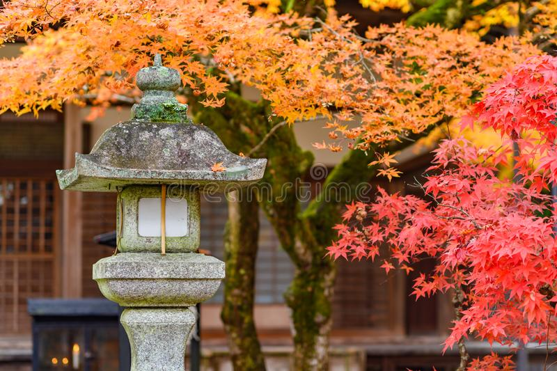 Stone lantern with beautiful red autumn leaves, Japan royalty free stock photo