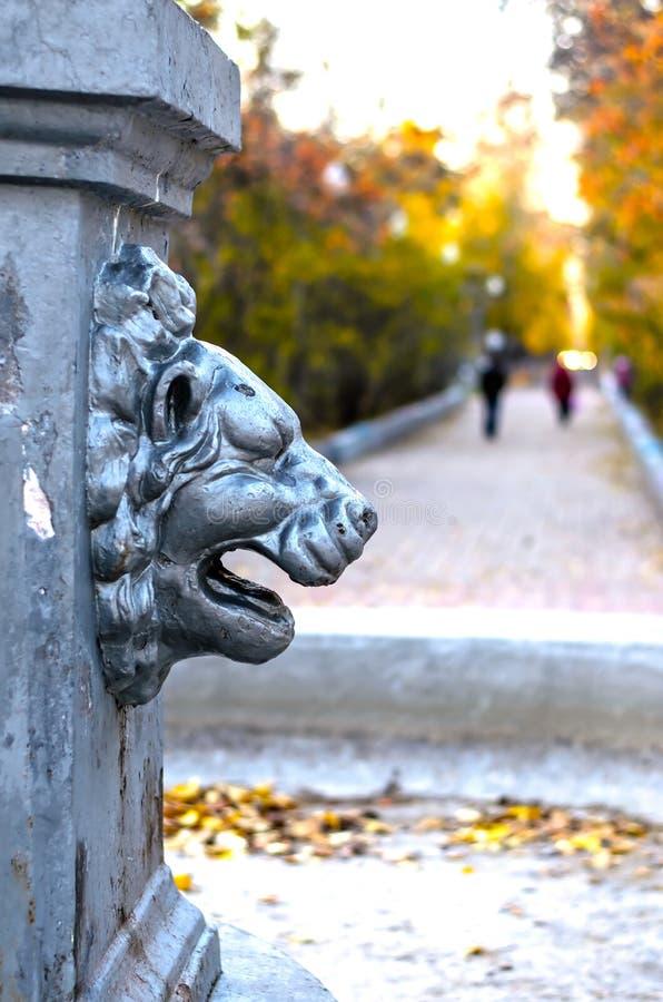 Stone lion's head. royalty free stock photos