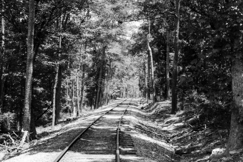 Stone Mountain Railroad royalty free stock photo