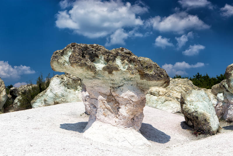 The Stone Mushrooms in Bulgaria. The Stone Mushrooms near Beli Plast Village in Bulgaria royalty free stock photo