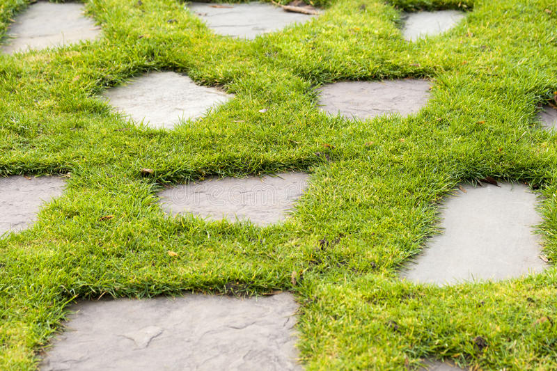 A Stone Path In The Green Grass Park Garden Stock Image