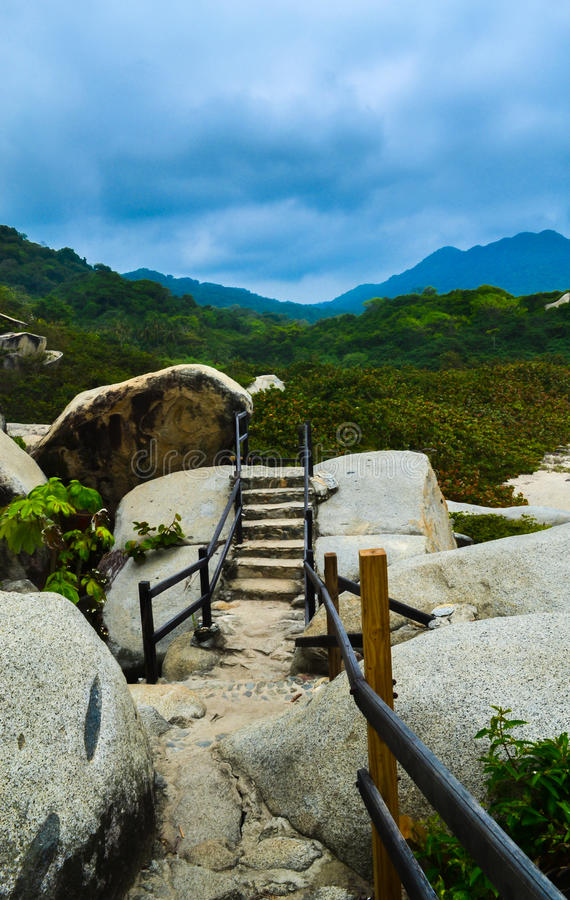 Stone path in nature royalty free stock photo
