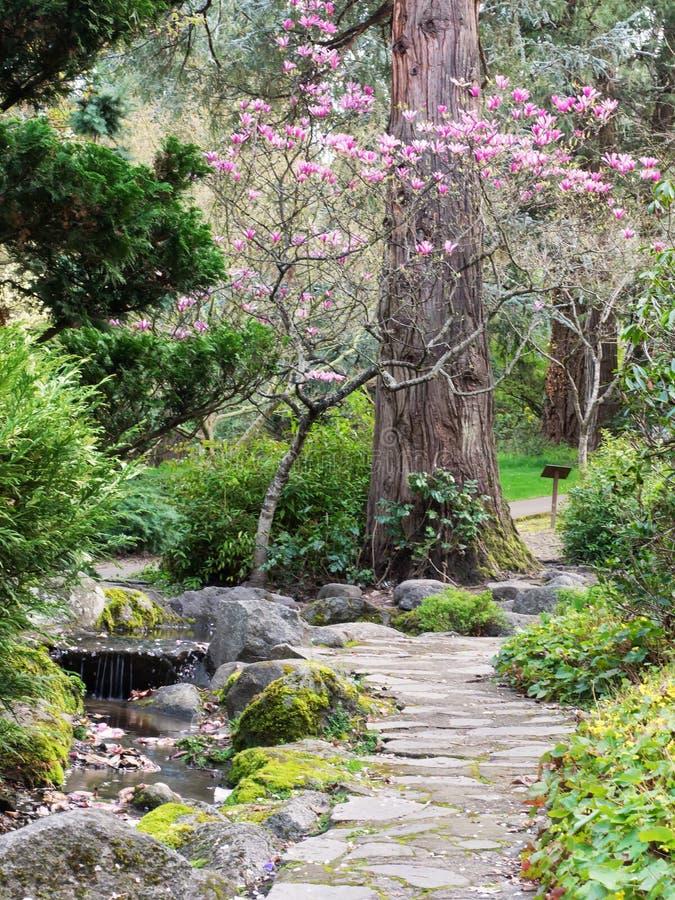 Stone path through park in spring royalty free stock photos