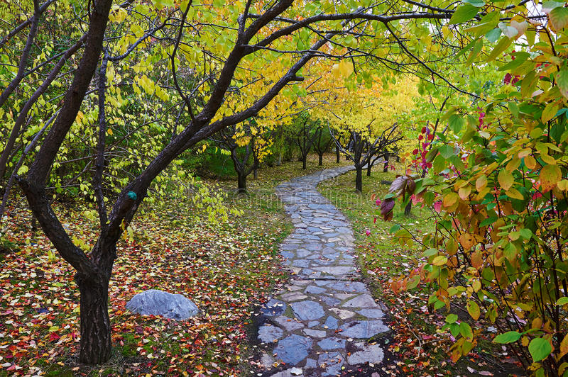 The stone path under autumn trees royalty free stock images