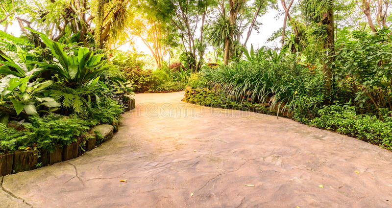 Stone pathway middle of flora garden.  stock photo