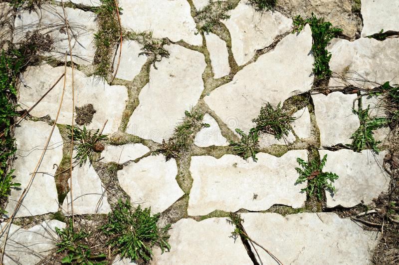 The stone paved sidewalk with grass in streaks. Background stock image