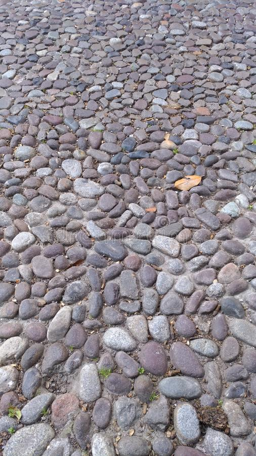 stone pavement in perspective in street on Padua stock photos
