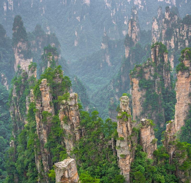 Stone pillars of Tianzi mountains in Zhangjiajie. National park which is a famous tourist attraction, Wulingyuan, Hunan Province, China royalty free stock photo