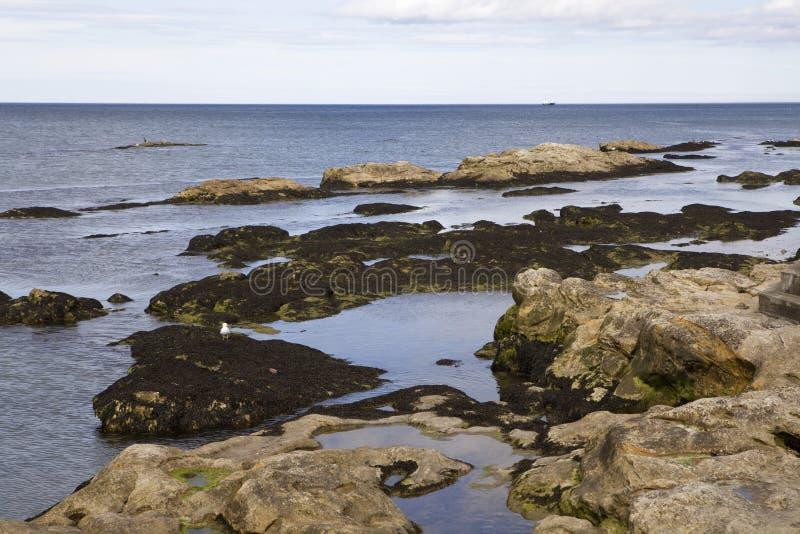 Stone at sea