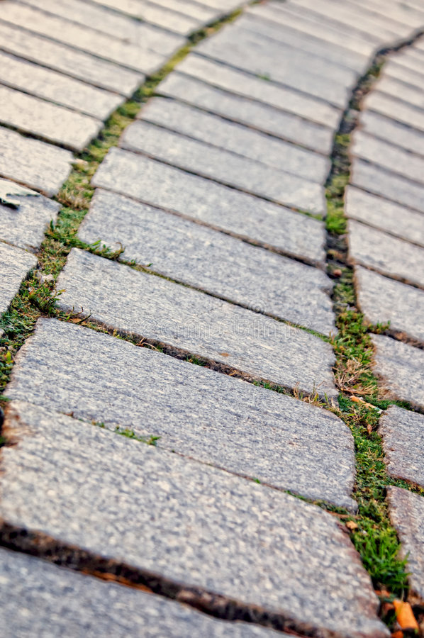 Download Stone squares stock photo. Image of weeds, gray, walkway - 6689152