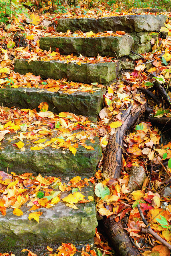Stone Staircase Stock Images