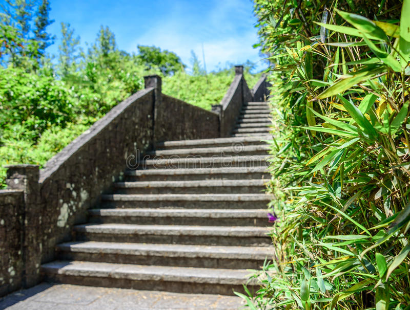 Stone staircase and bamboo wall at Mirante Dona Marta, Rio de Janeiro, Brazil. High stone staircase with a handrail and bright green bamboo wall at Mirante Dona stock photography