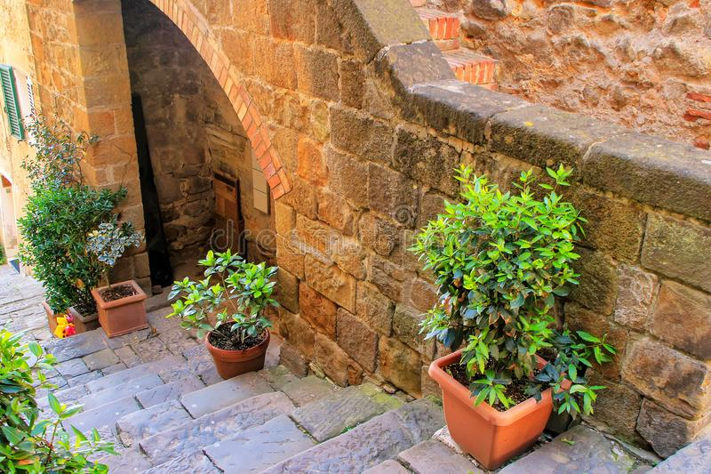 Stone staircase with plant pots in historic center of Montalcin. O town, Val d`Orcia, Tuscany, Italy. The town takes its name from a variety of oak tree that stock image