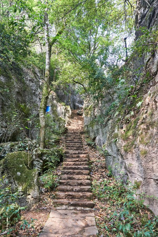 Stone stairs go up to peak of mountain. Between rock wall in forest stock photo