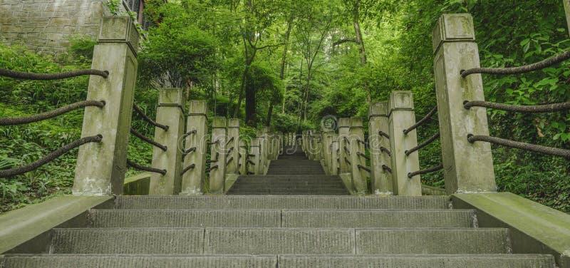 Stone stairs royalty free stock photos