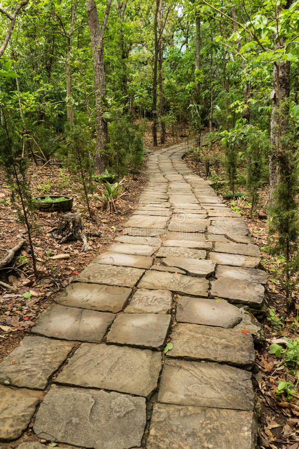 Stone stairway. Stone path leading to the forest with trees around stock photo