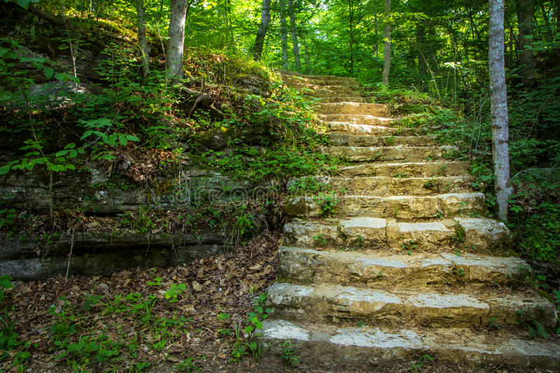 Stone Stairway Through The Woods. Stone stairway winds through the forest to the top of a hill. Carter Caves State Park. Olive Hill, Kentucky stock image