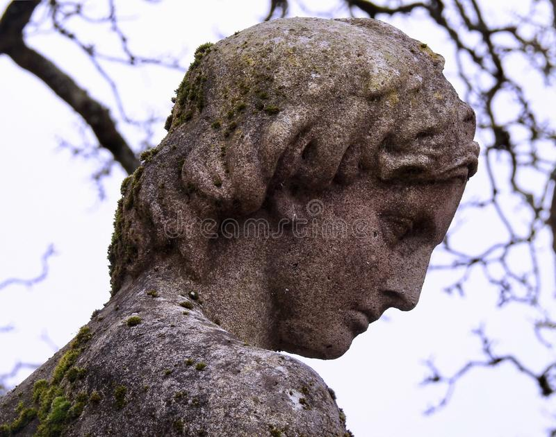 Stone Statue of a Man Classical Greek Style. The face and head in profile of a mystery male statue in public gardens in Hampshire UK. Possibly Actaeon from royalty free stock images
