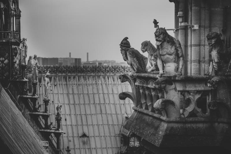 Mythical creature gargoyle on the roof of Cathedral Notre Dame de Paris. View from the tower. stock photography