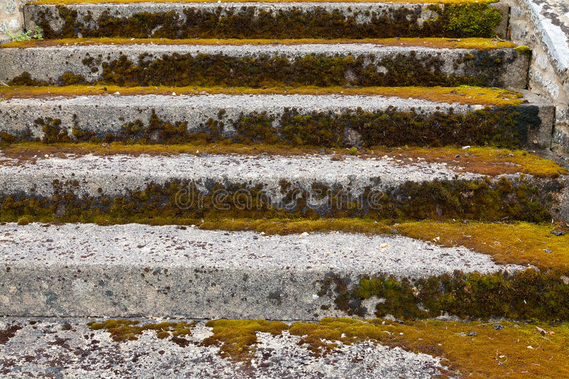 Download Stone steps ascending stock image. Image of step, stone - 32064041