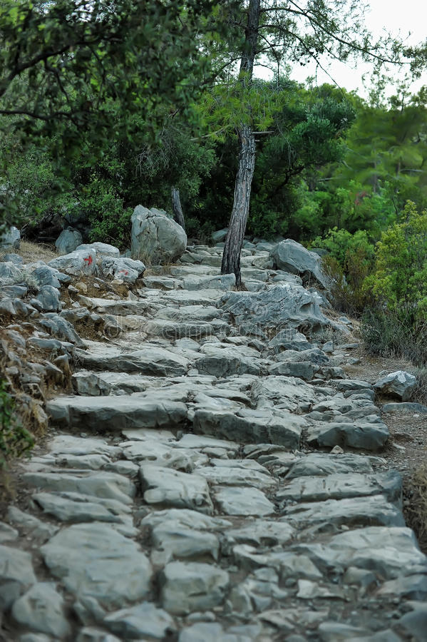 Carved Stone Steps : Stone steps carved into the rock stock image