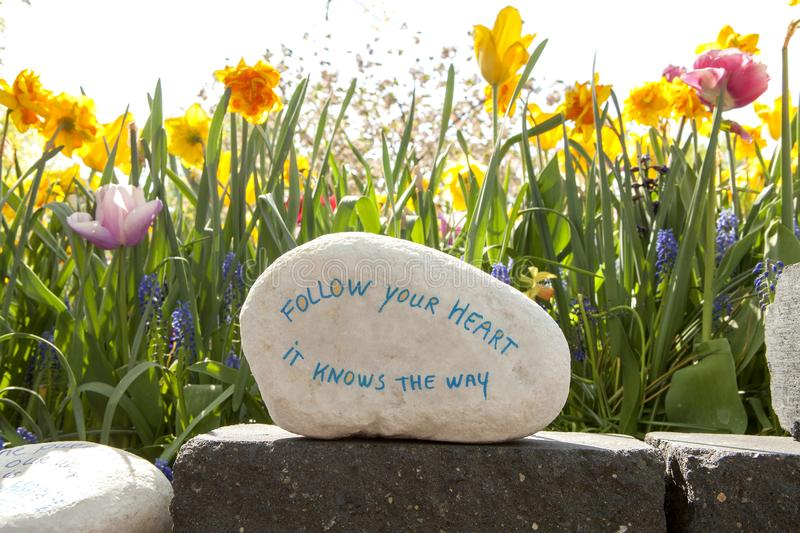 Stone with text. Follow your heart it knows the way against beautiful flowers stock photo
