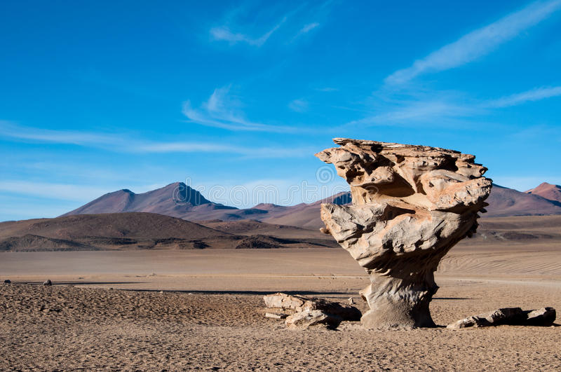 Download Stone Tree, Bolivia Royalty Free Stock Photography - Image: 25775727