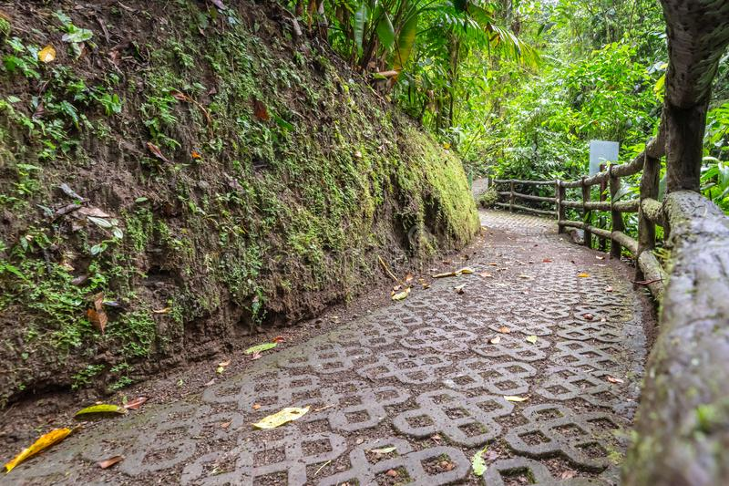 Stone walking path with tree branch railing through the rainforest. In Mistico Park Costa Rica royalty free stock photos