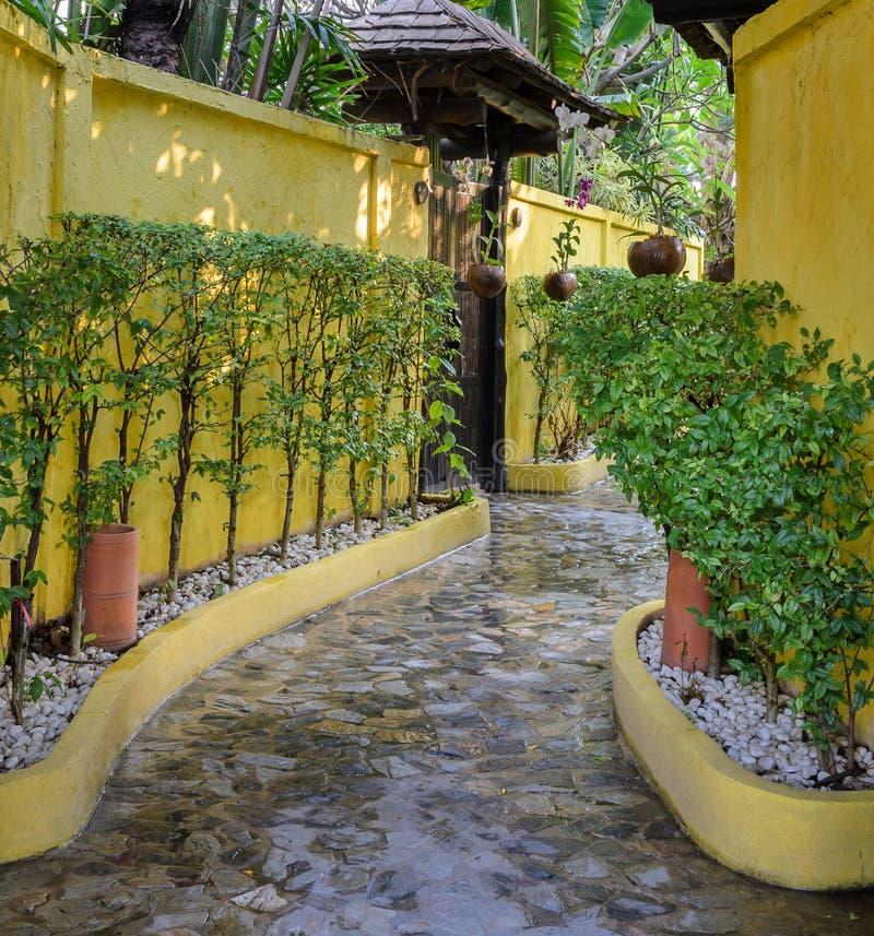 Stone walkway with decorate tree. Wet stone walkway with decorate tree along yellow wall stock photo