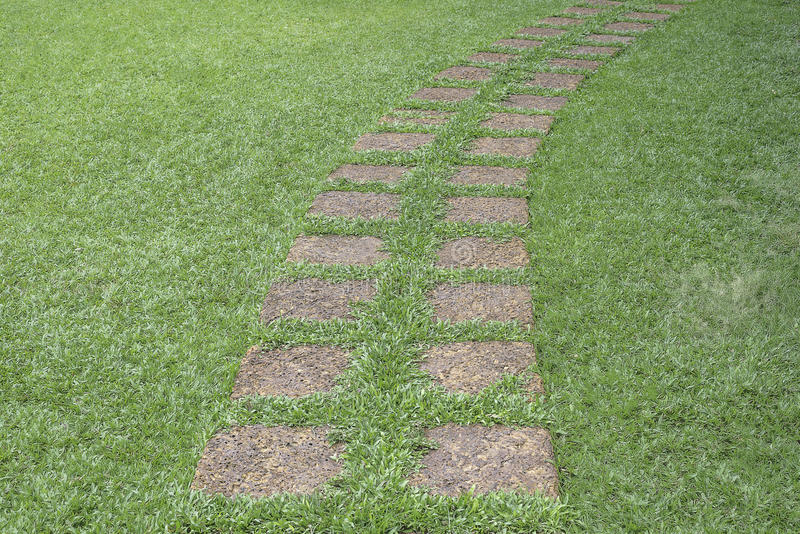 Stone walkway in the garden with green grass. stock images