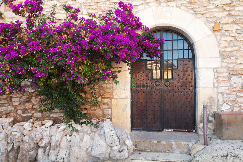 Stone wall with closed wooden door and flowers. Decorative purple Bougainvillea bush growing near old stone wall with closed wooden door royalty free stock photo