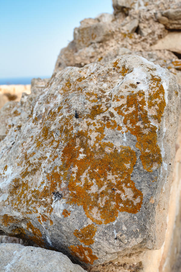 The stone in the wall of the fortress Santa Barbara, covered with lichen. royalty free stock images