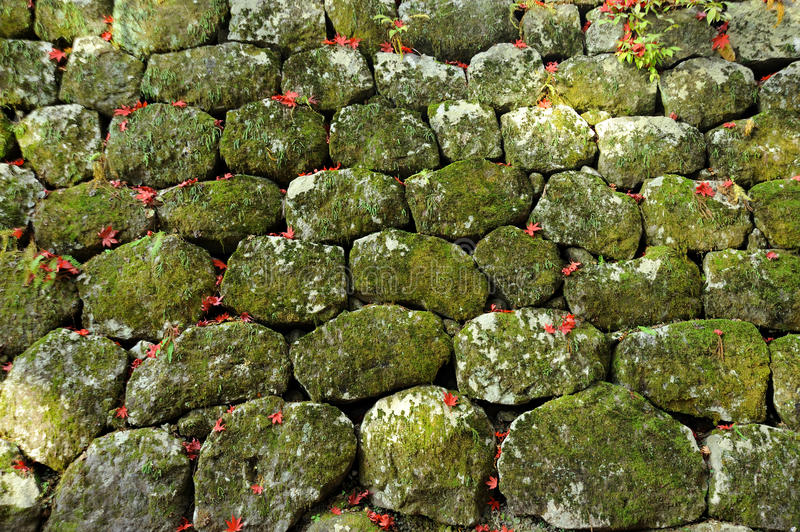 Download Stone Wall With Moss Textured Stock Image - Image: 30736945