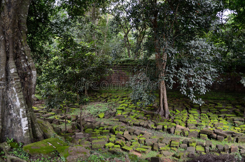 Stone wall. Near the Baphuon temple, Siem Reap, Cambodia royalty free stock image