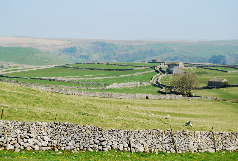 Stone wall panorama - Yorkshire Dales (UK) stock photo