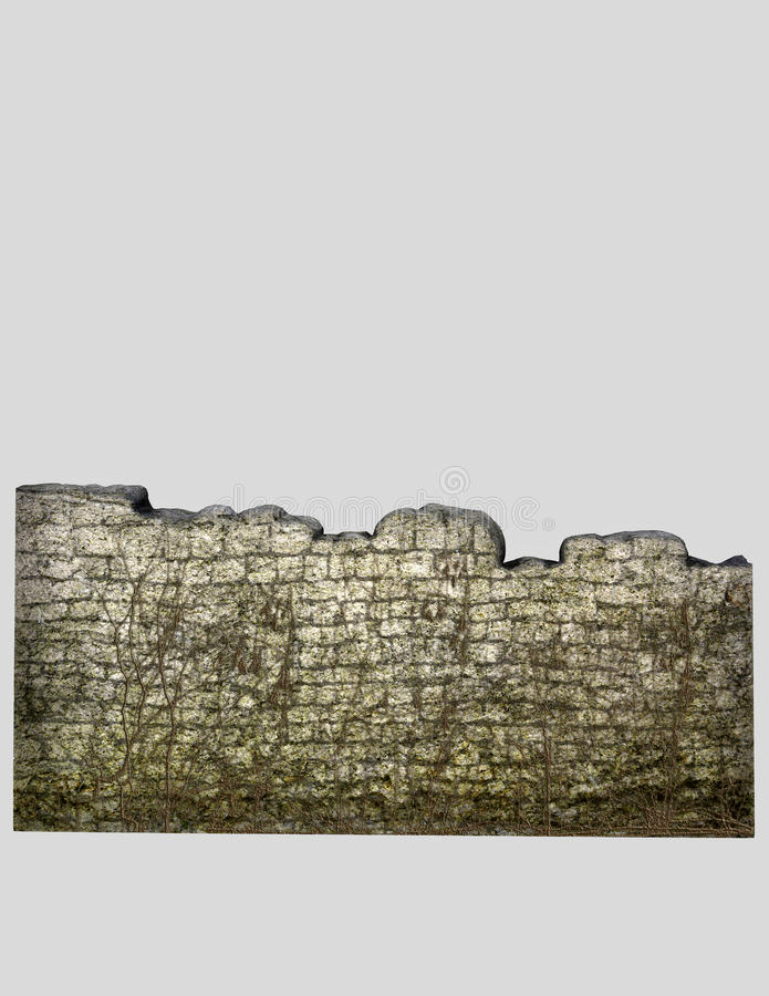 Stone wall with vines stock illustration